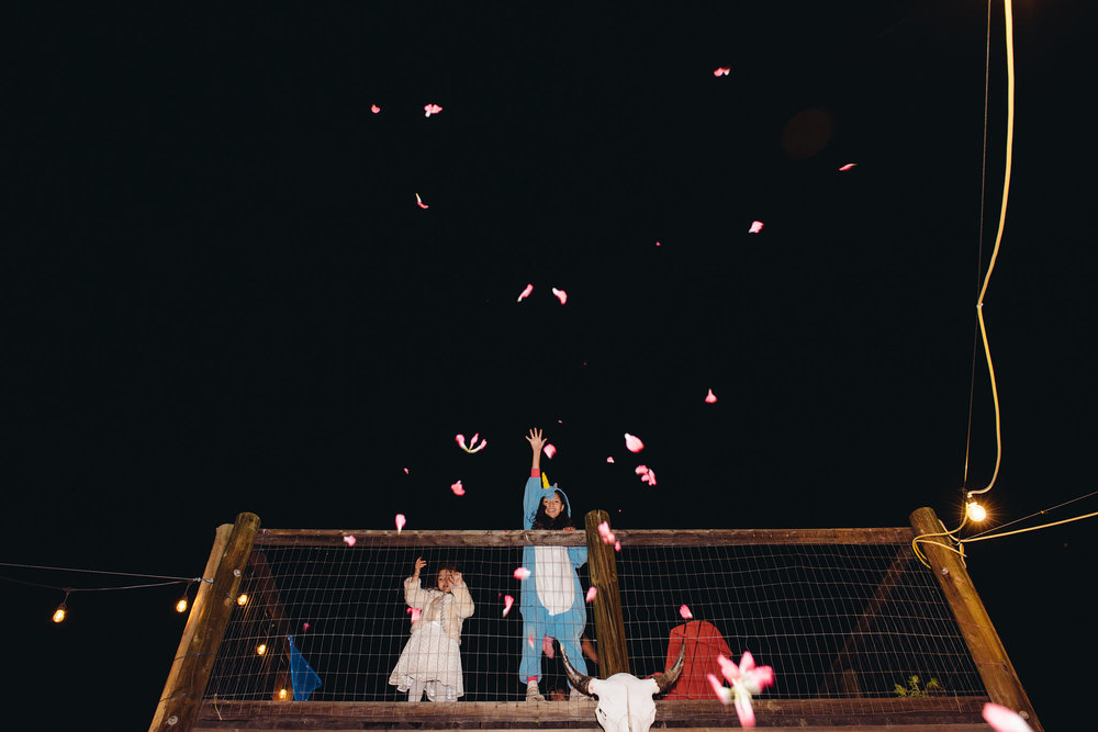 Rose petals from the sky were mysteriously fluttering down to the dance floor.