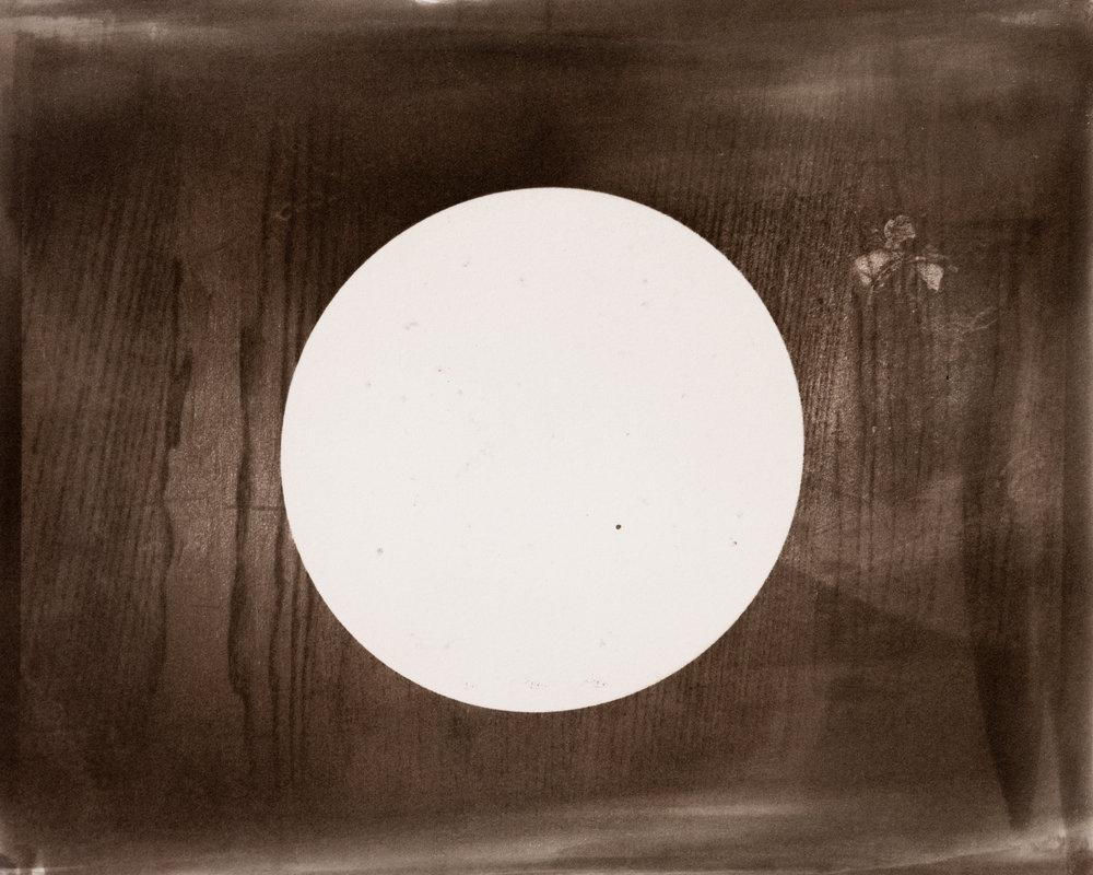 Quantum Plate