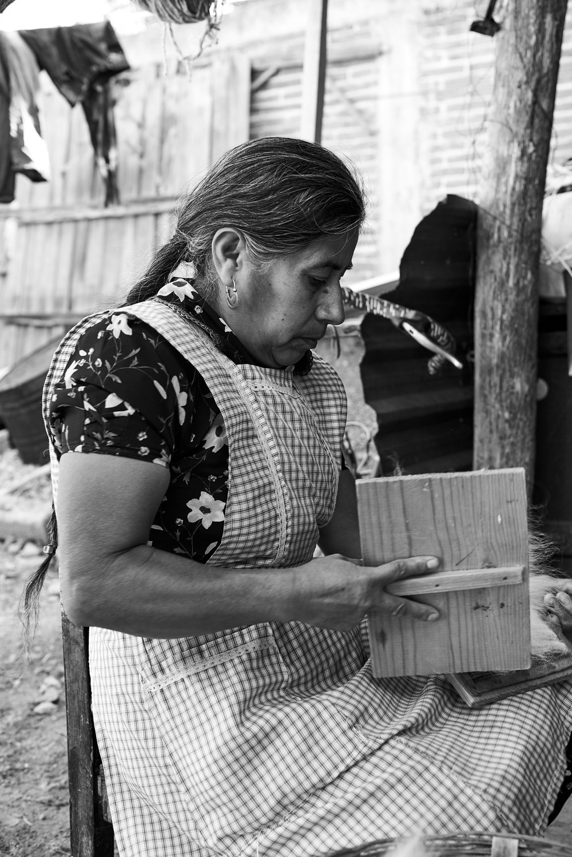 Clare Yazbeck Oaxaca Vida Nueva