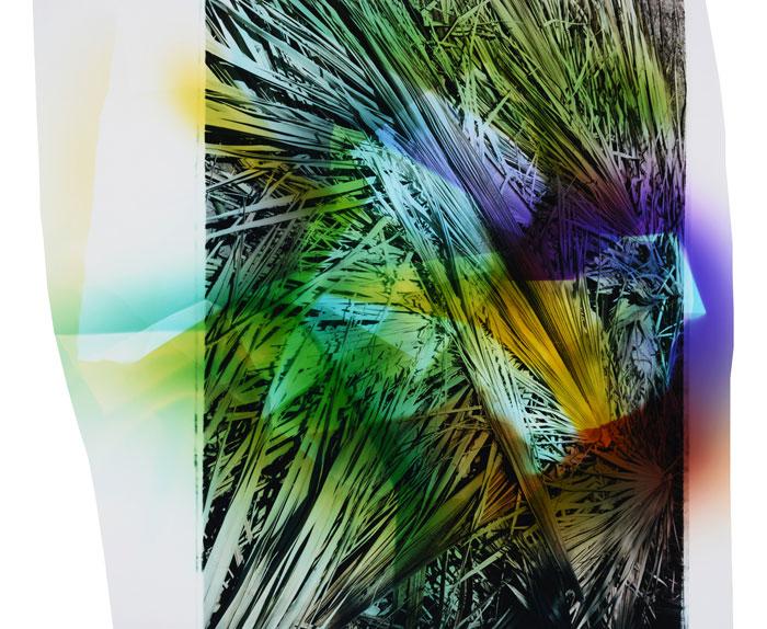 Chloe Sells, Palm #1, 2015, Next Level