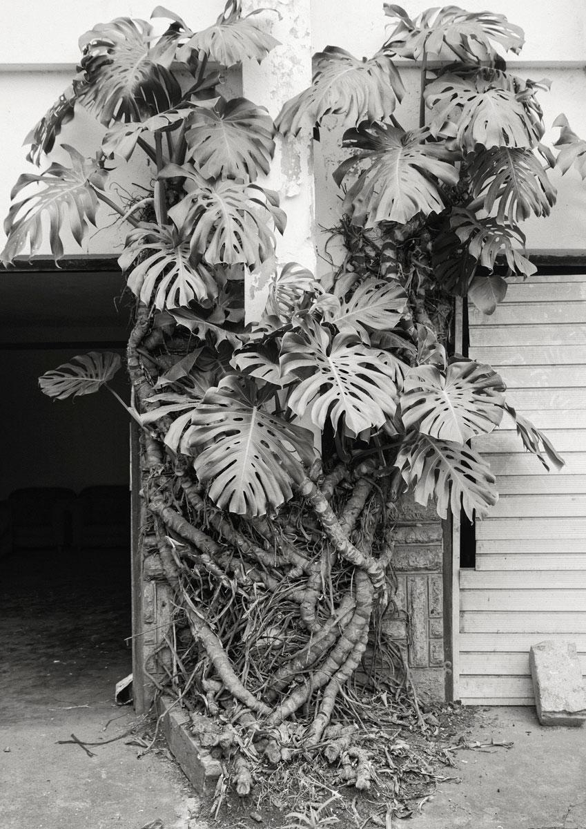 EDUN-Karibu-Edito-image-n'13.jpg