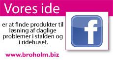 Broholm-Biz.jpg