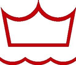 DV logo.jpg