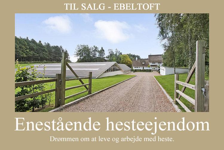 Elsegårdevej-3.jpg