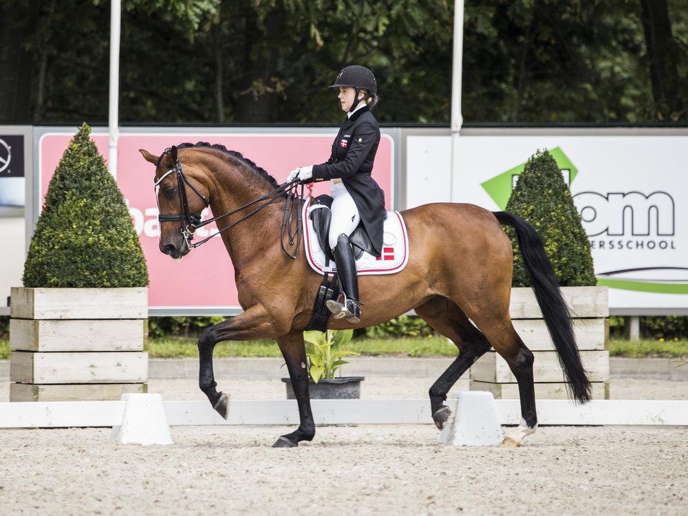 Noosa Melody og Karoline Rohmann under jr/yr EM i Roosendaal 2017 - photo: H2R
