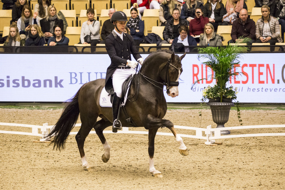 2nd: Blue Hors Don Olymbrio - Daniel Bachmann Andersen DEN. Photo credit H2R