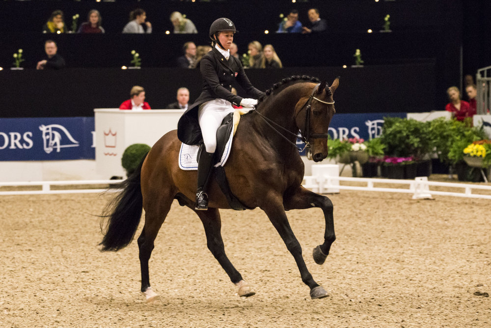 Agnete Kirk Thinggaard og Blue Hors Zatchmo til CDI3 i Herning - photo credit: H2R