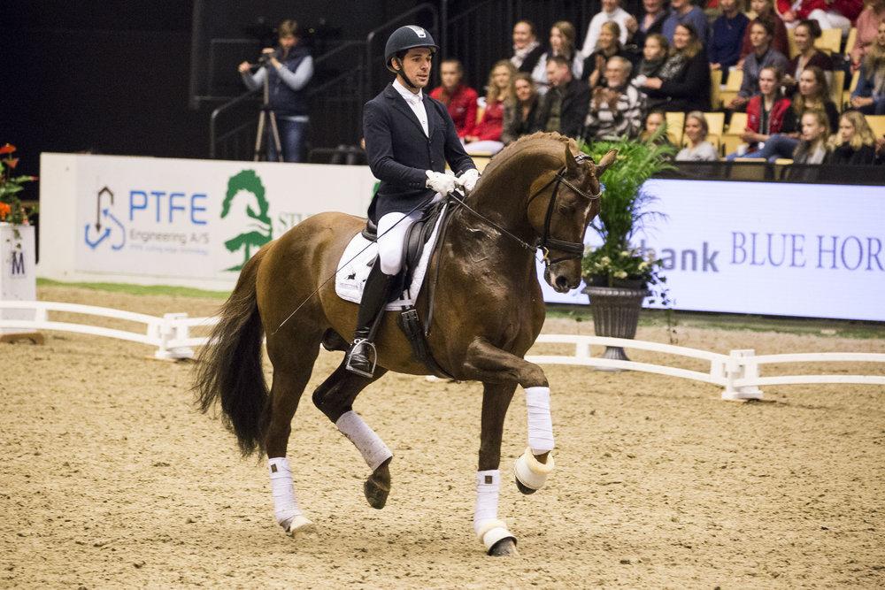 D´avie and Severo Jurado Lopez at Danish Warmblood stallion show 2018 - photo credit: H2R