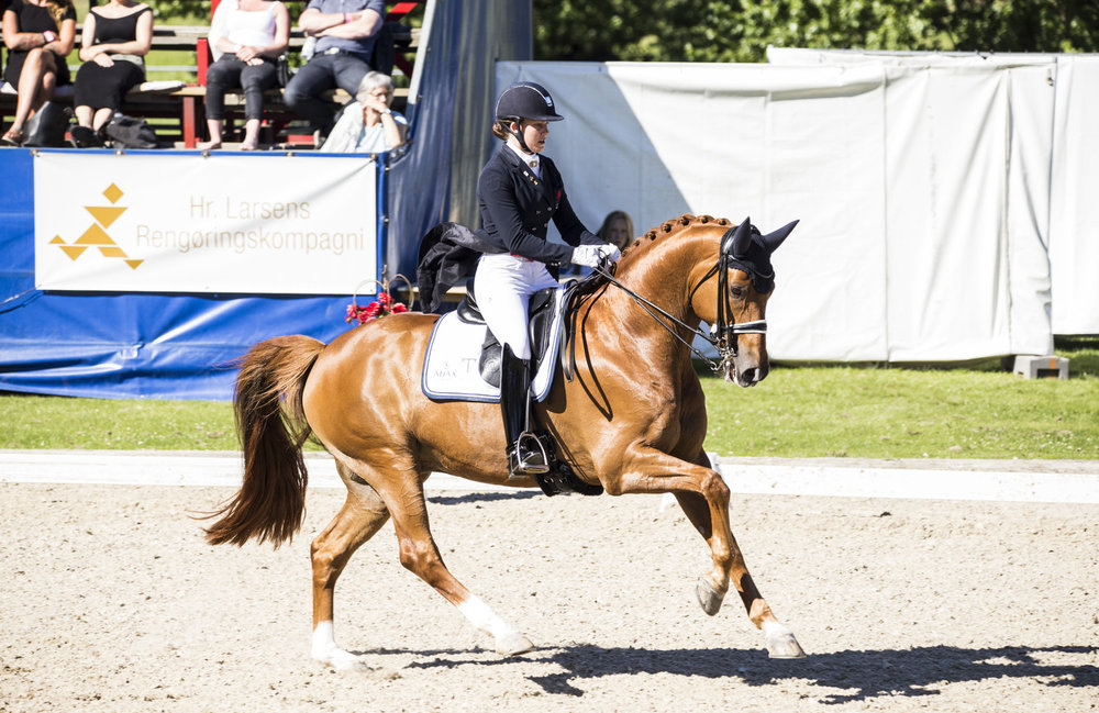 Atterupgaards Cassidy and Cathrine Dufour during 2017 Danish national championships. Photo credit: H2R