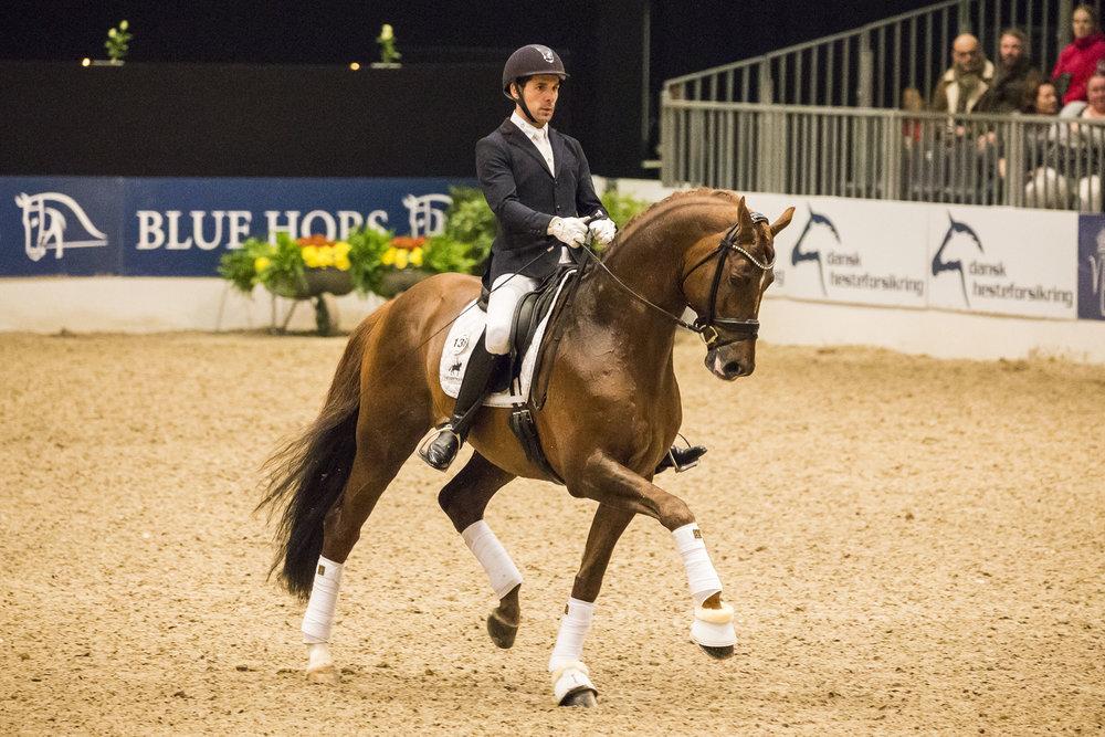 Severo Jurado Lopez and D´avie at Danish Warmblood stallion show 2018 - photo credit: H2R