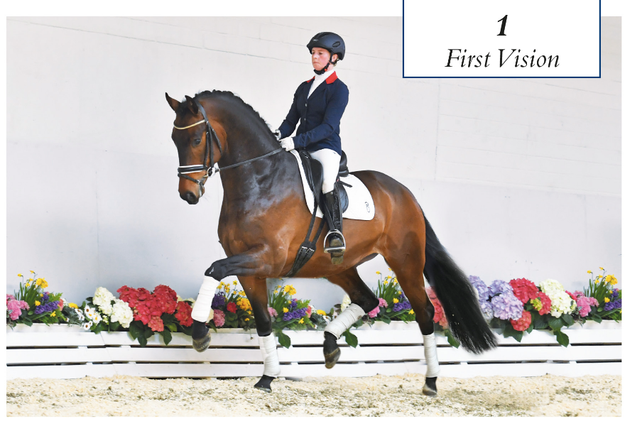 Most expensive riding horse by Blue Hors First Choice / Blue Hors Romanov sold for 80.000 euros to Norwegian Cathrine Rasmussen.