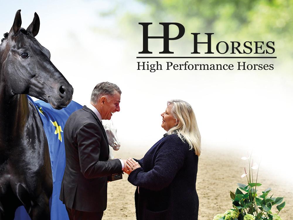 Banner 1000 x 750 pixels HP Horses (1).jpg
