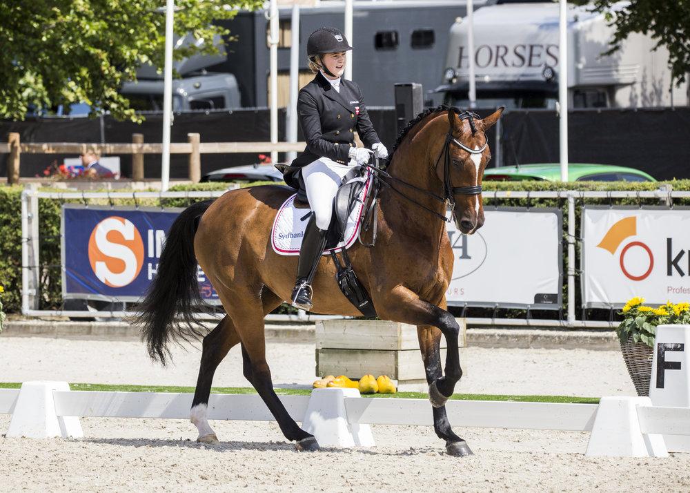 Karoline Rohmann med Noosa Melody til sidste års EM i Roosendaal - photo credit: H2R
