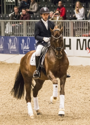D´avie and Severo Jurado Lopez during Danish Warmblood stallion show 2018 - photo credit: H2R