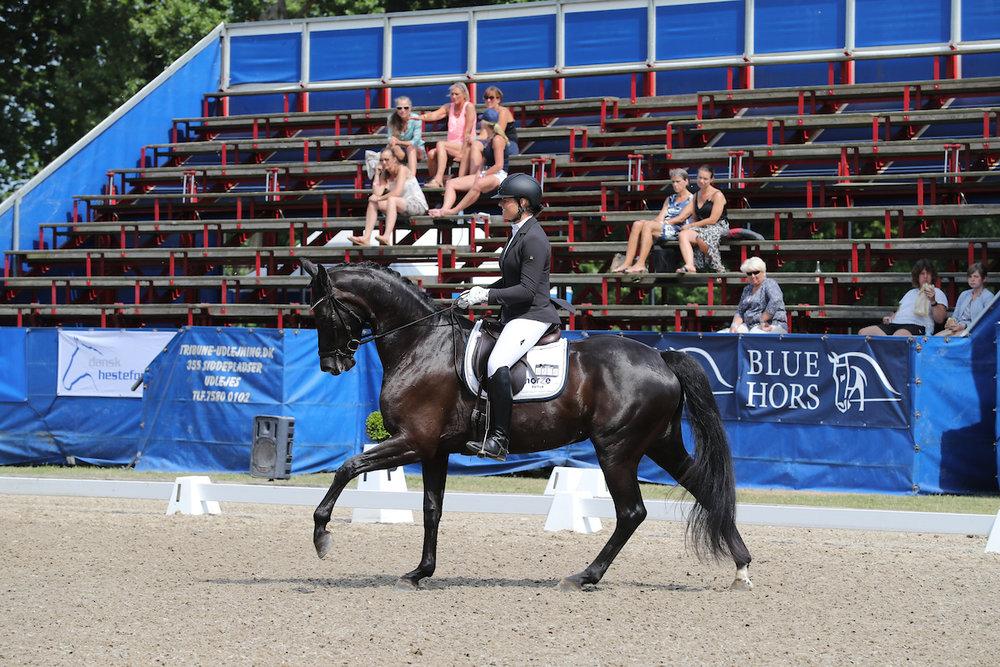 Hevringholms Delaya by ERA Dancing Hit/Hertug. Rider Susanne Barnow