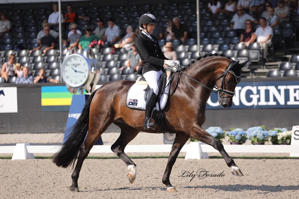 Danish Warmblood Lindballe´s Just Perfect with Simone Pearce - photo credit: Lily Forado