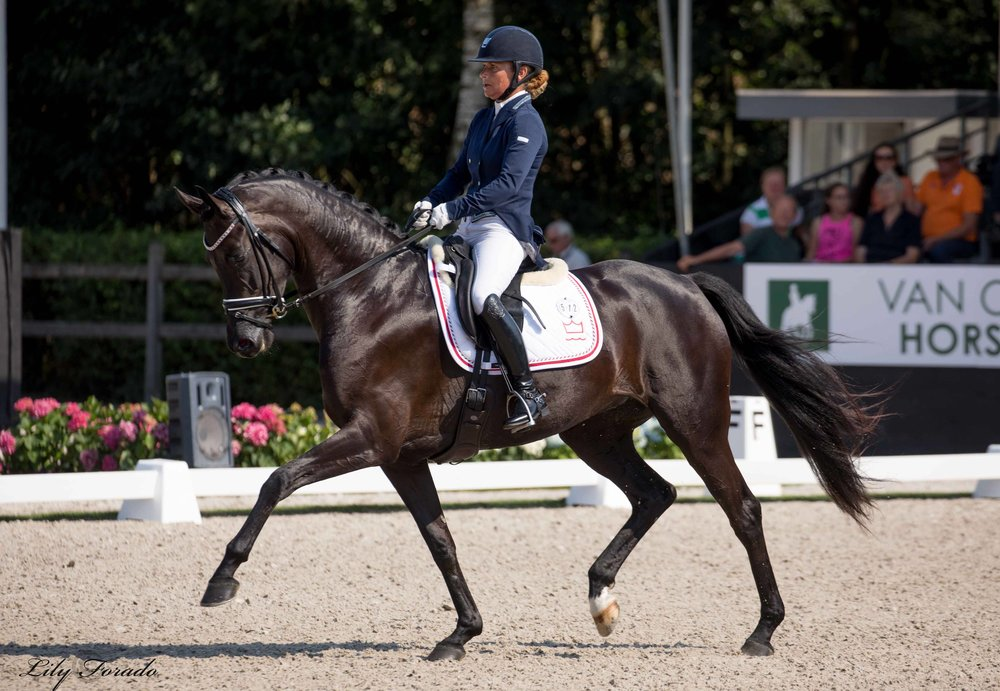 Danish Warmblood Delizia and Anne Troensegaard - photo credit: Lily Forado