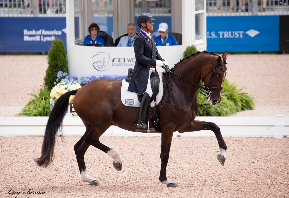 Suppenkasper and Steffen Peters USA - photo credit: Lily Forado