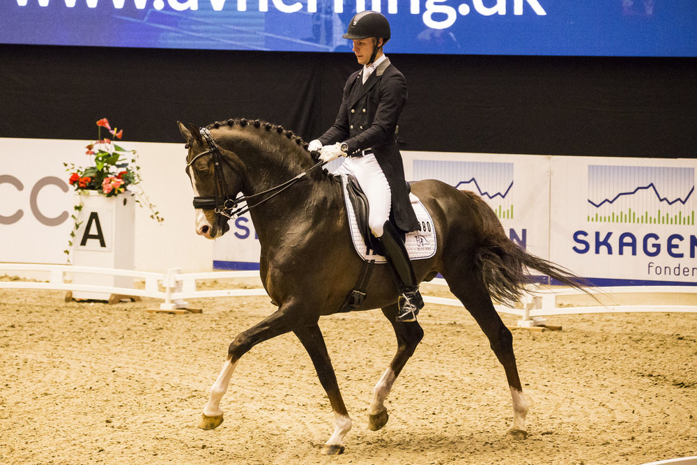 Daniel Bachmann Andersen with Blue Hors Don Olymbrio - photo credit: H2R
