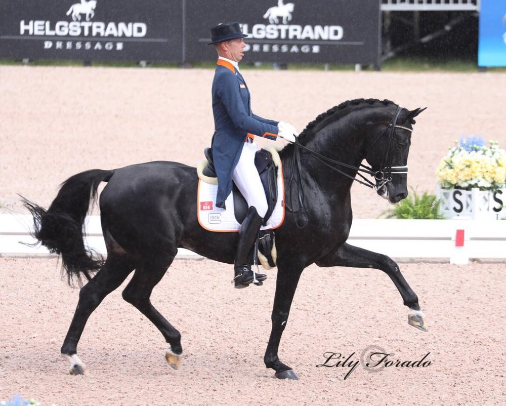 Glock´s Dream Boy N.O.P. and Hans Peter Minderhoud - photo credit: Lily Forado.