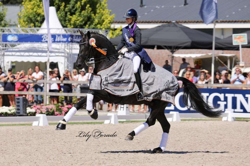 World Champion 7 year old 2018 - KWPN stallion Glamourdale with Charlotte Fry