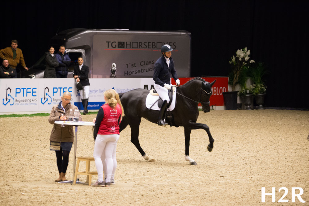 Queenspark Wendy by Sezuan / Blue Hors Soprano, bred by Kurt Gosmer, owned by Helgstrand Dressage and Chateau de Fontaine, and ridden by Andreas Helgstrand to his 7th victory in Danish Warmblood Young Horse Championship.