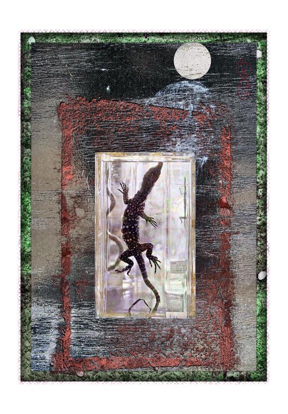 croc_triptych3_left2e.jpg