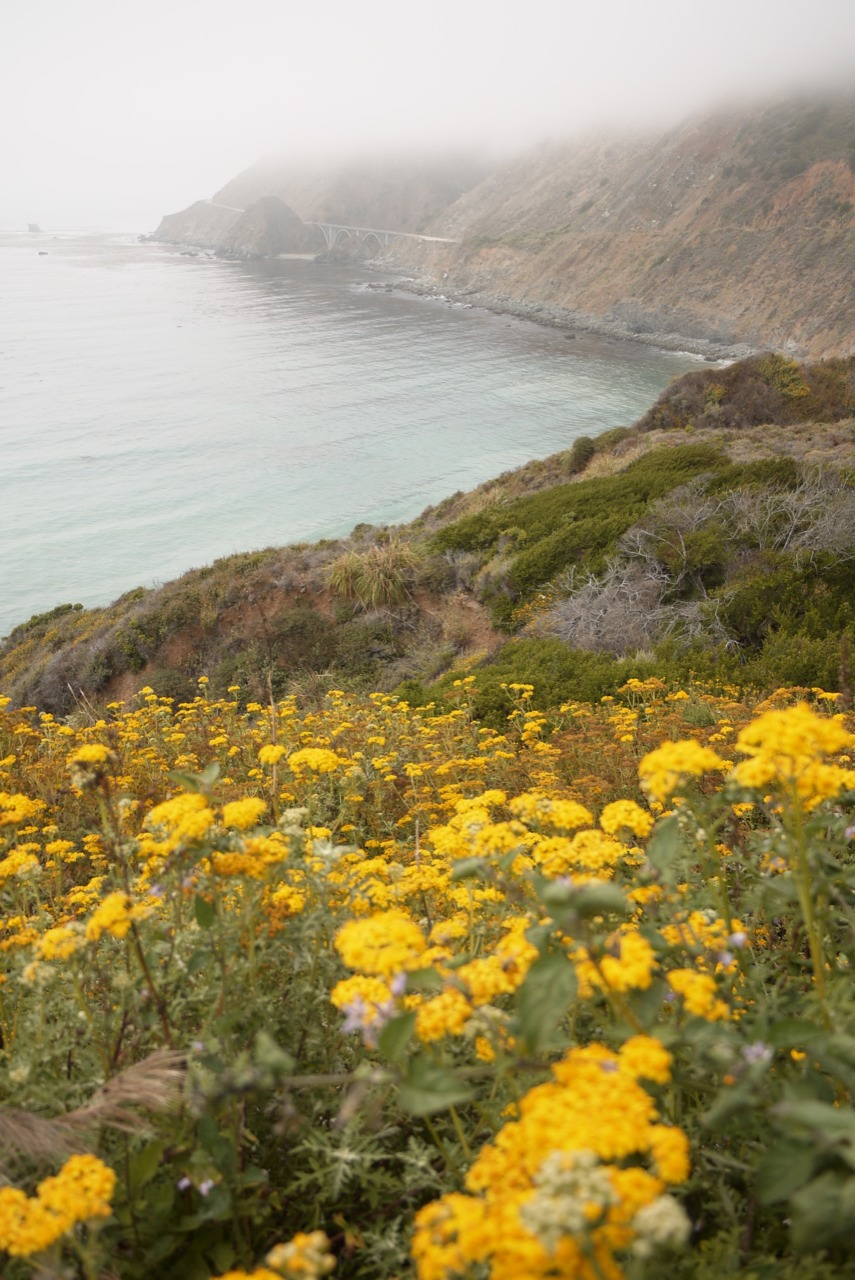 My Big Sur 2012