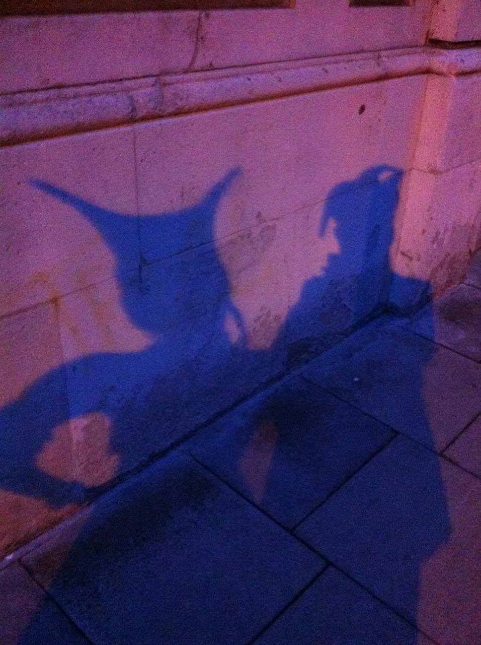Eurovision shadowscape