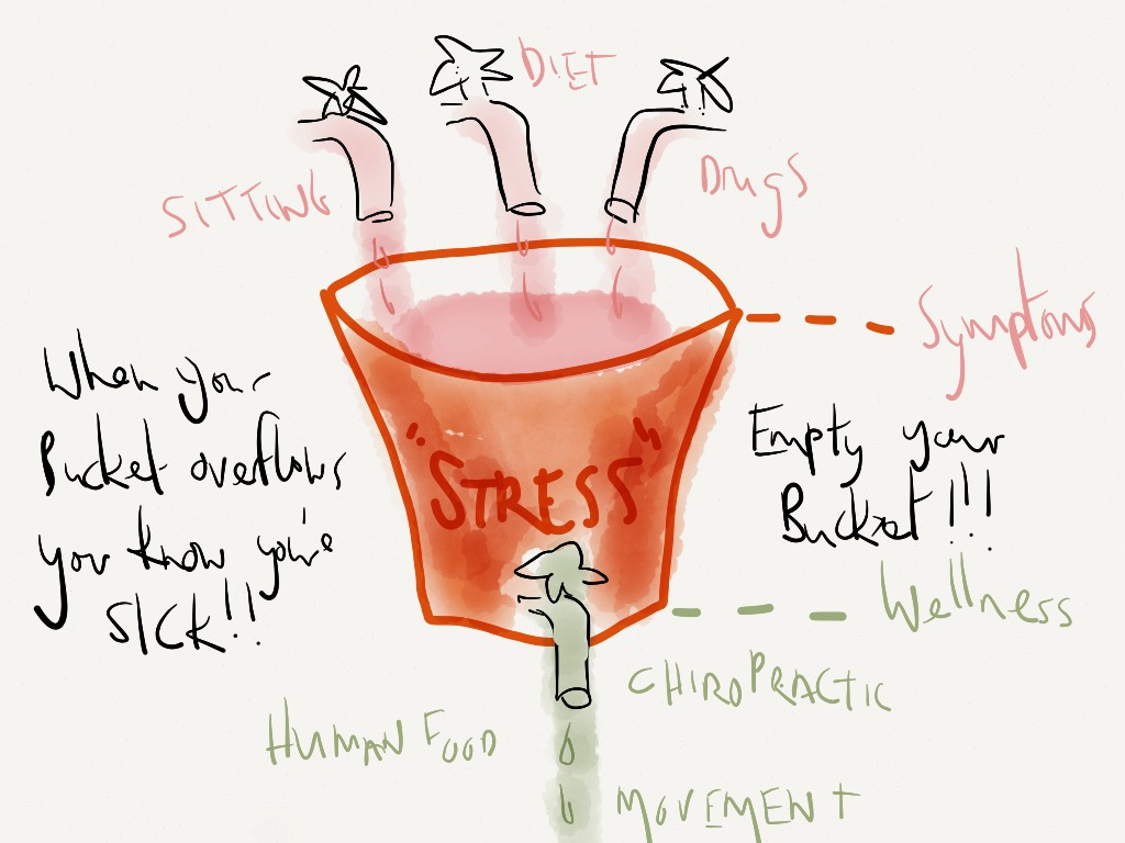 Empty Your Stress bucket