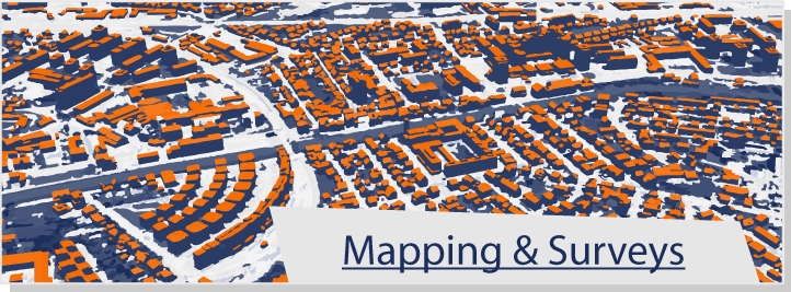 Mapping & Surveys