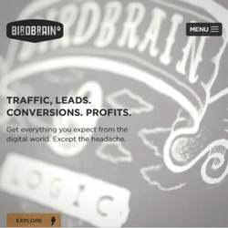 Our website copywriters loved this job for BirdBrain, the digital marketing firm. Take a look at the website and our content.