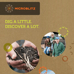 Our brochure copywriting for UWA's Microblitz project.