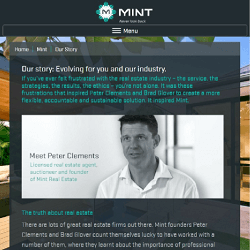 Click to visit the Mint website and read our copywriters' work.