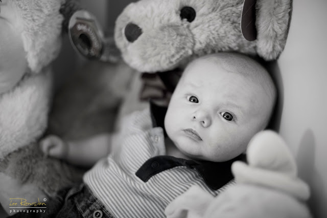 Tyler Presswell child photography with teddy