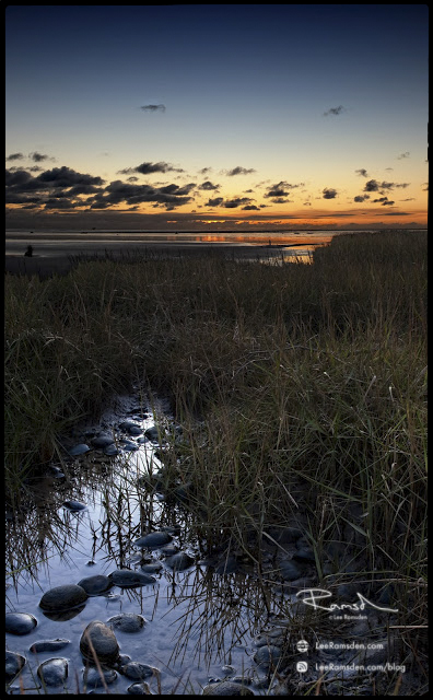 "<img src=""Vertorama"" alt="" vertorama vertical lee ramsden long grass sunset foreground waterbeach Lytham St Annes"">"