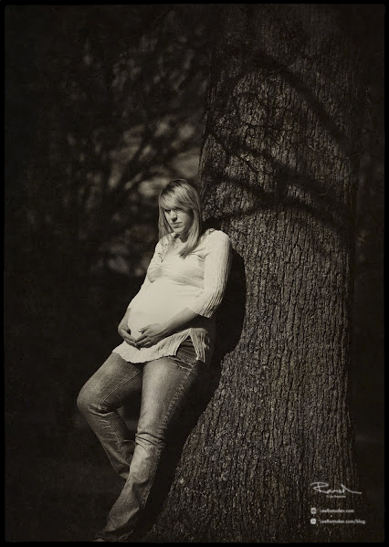Lousie pregnancy pregnant maternity monochrome large tree shadows