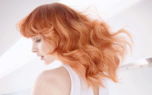 25% off x5 Wash, Cut & blow Dry