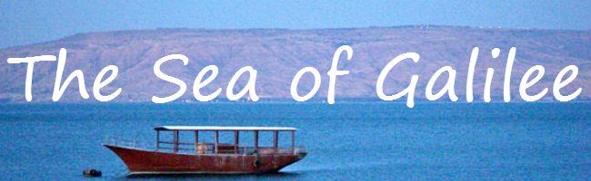 sea banner (2)