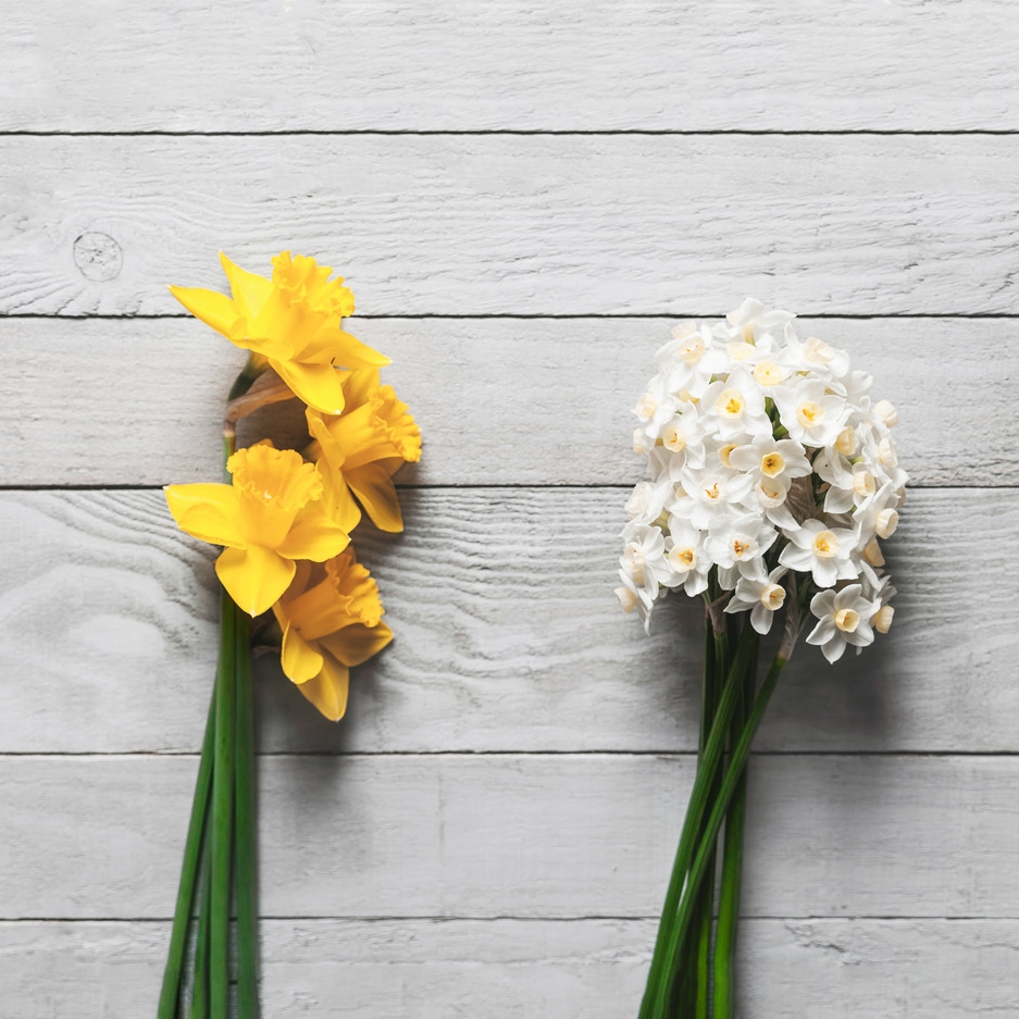 Random Acts of Flowers