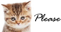 kitten-please-200px.png