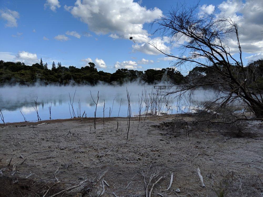 Thermal lake in a local park in Rotorua.