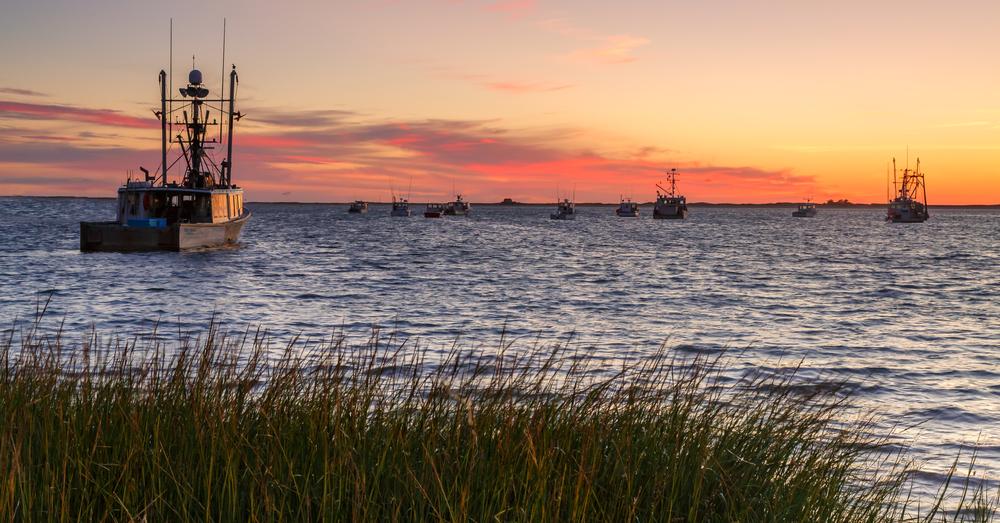 Fishing Fleet, Cape Cod