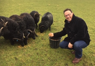 Fred with Jack and Morna Cuthbert's Hebridean sheep