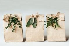 Using herbs to decorate simple gift bags.