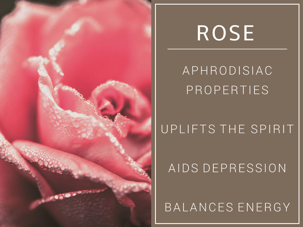 Rose demo info.jpg