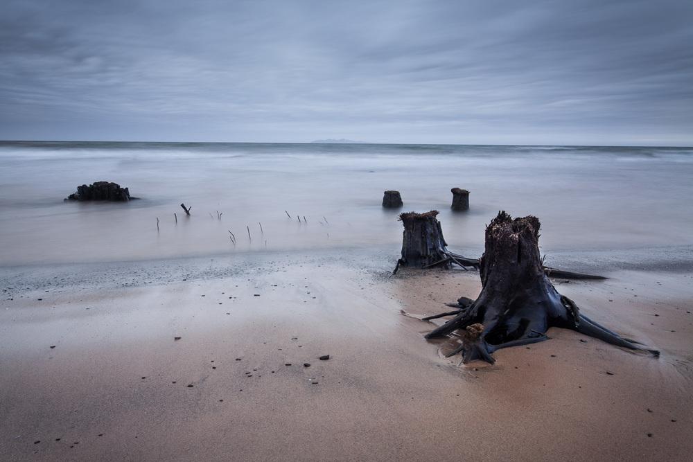 Photo de paysage aux Iles de la Madeleine - Foret fossile