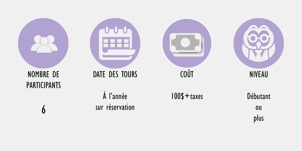 info bar tour FR.jpg