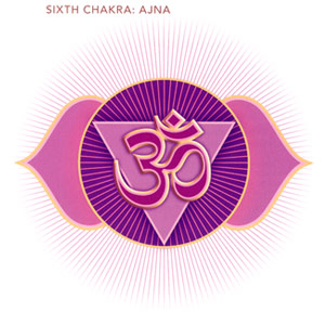 "Chakra images taken from ""The Subtle Body"" by Cyndi Dale"