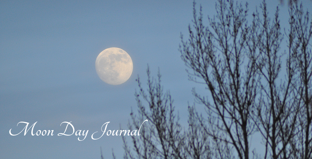 Moon Day Journal